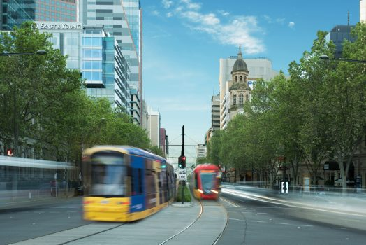 trams on north terrace