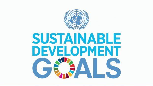 UN SDG goals